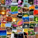 Comment créer un livre photo en ligne ?
